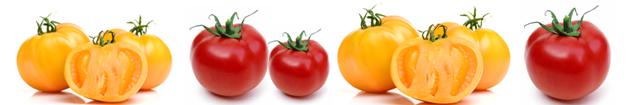 tomates-recette-tarte-fine