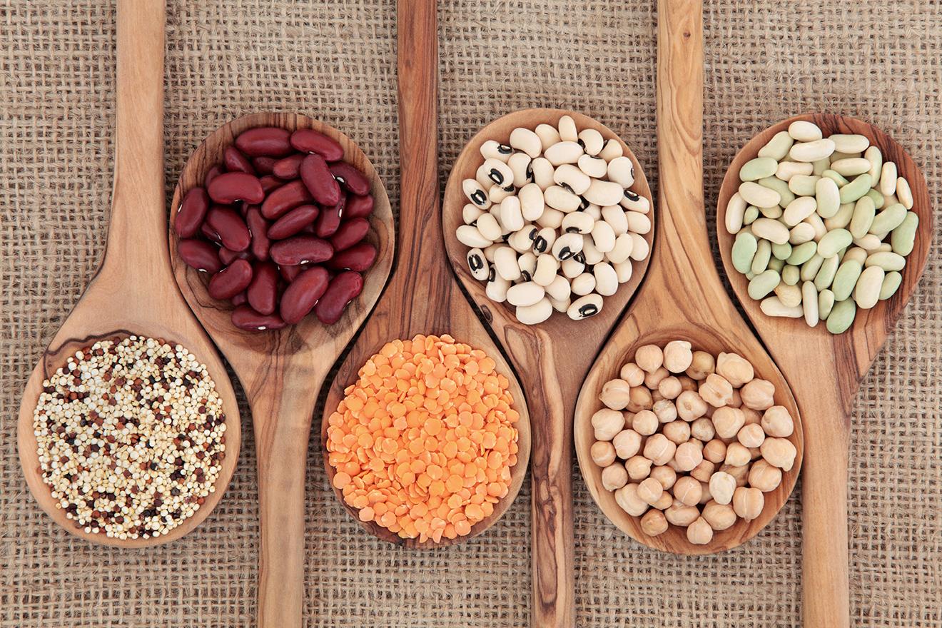 alimentation-environnement-proteines-vegetales-graines-alternatives