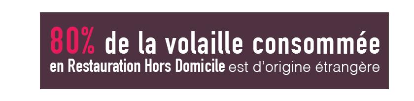 chiffre-volaille-francaise