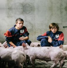 porc-ferme-jeunes-conference-filiere-porcine